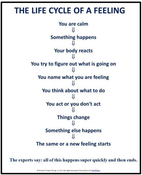 #feelingmanagement #angermanagement #emotionalintelligenc